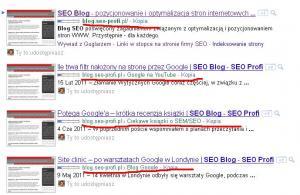 Nowy układ adresu url w SERPach w Google