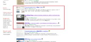 Gdzie zniknął przycisk Google +1 z SERPów