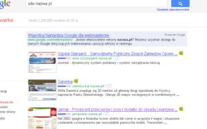 Podwójne indeksowanie serwisów w nazwa.pl - Net-Art