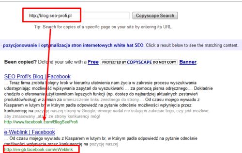 Wyniki sprawdzenia Copyscape dla bloga SEO Profi