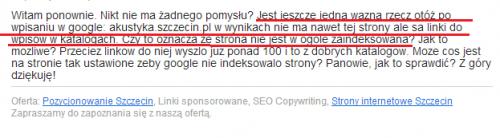 Pozycjonowanie Szczecin - z życia wzięte cz. 2