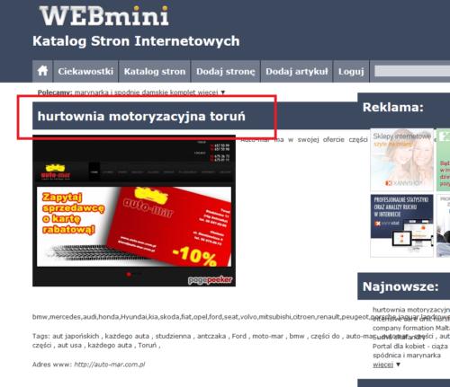 webmini-katalog-stron-internetowych